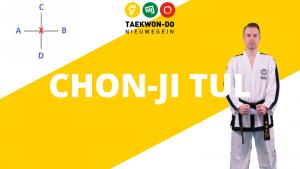 Bekijk de Tuls op het Youtube Kanaal van Taekwon-Do Nieuwegein